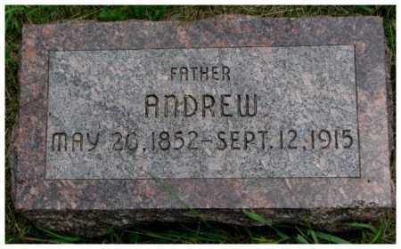 CHRISTENSON, ANDREW - Burt County, Nebraska | ANDREW CHRISTENSON - Nebraska Gravestone Photos