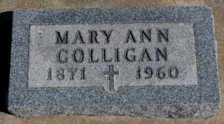 COLLIGAN, MARY ANN - Burt County, Nebraska   MARY ANN COLLIGAN - Nebraska Gravestone Photos