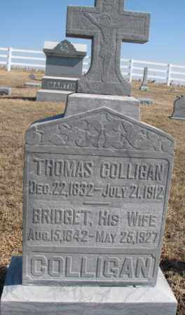 COLLIGAN, THOMAS - Burt County, Nebraska | THOMAS COLLIGAN - Nebraska Gravestone Photos
