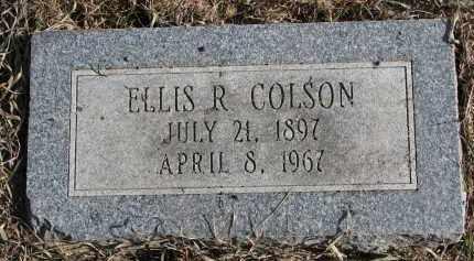 COLSON, ELLIS R. - Burt County, Nebraska | ELLIS R. COLSON - Nebraska Gravestone Photos