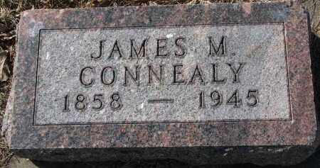 CONNEALY, JAMES M. - Burt County, Nebraska | JAMES M. CONNEALY - Nebraska Gravestone Photos