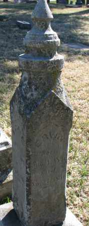 CROWLEY, ERVIN - Burt County, Nebraska | ERVIN CROWLEY - Nebraska Gravestone Photos