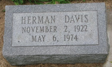 DAVIS, HERMAN - Burt County, Nebraska | HERMAN DAVIS - Nebraska Gravestone Photos