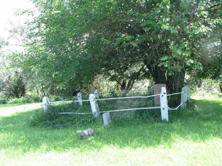 *DEMAN-HINDS, DEMAN PLOT - Burt County, Nebraska | DEMAN PLOT *DEMAN-HINDS - Nebraska Gravestone Photos