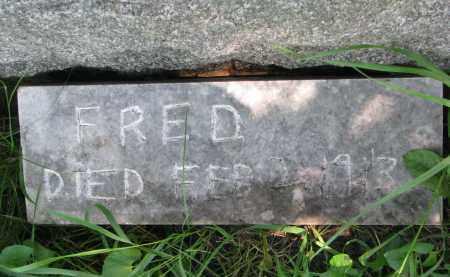 DEMAN, FRED - Burt County, Nebraska | FRED DEMAN - Nebraska Gravestone Photos