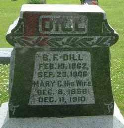 DILL, MARY C. - Burt County, Nebraska | MARY C. DILL - Nebraska Gravestone Photos