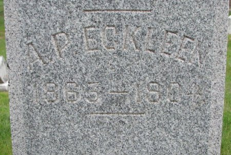 ECKLEEN, A.P. (CLOSE UP) - Burt County, Nebraska | A.P. (CLOSE UP) ECKLEEN - Nebraska Gravestone Photos