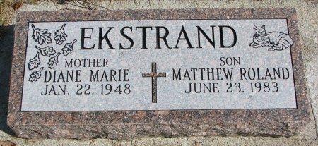 EKSTRAND, DIANE MARIE - Burt County, Nebraska | DIANE MARIE EKSTRAND - Nebraska Gravestone Photos
