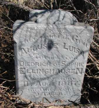 ELLINGHAUSEN, AUGUSTE LUISA - Burt County, Nebraska | AUGUSTE LUISA ELLINGHAUSEN - Nebraska Gravestone Photos