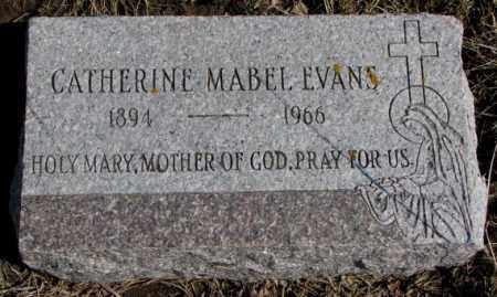 EVANS, CATHERINE MABEL - Burt County, Nebraska | CATHERINE MABEL EVANS - Nebraska Gravestone Photos