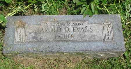 EVANS, HAROLD O. - Burt County, Nebraska | HAROLD O. EVANS - Nebraska Gravestone Photos