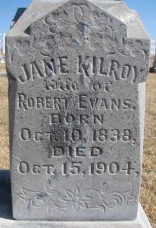 EVANS, JANE #2 - Burt County, Nebraska | JANE #2 EVANS - Nebraska Gravestone Photos