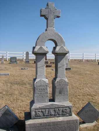 EVANS, JANE - Burt County, Nebraska | JANE EVANS - Nebraska Gravestone Photos