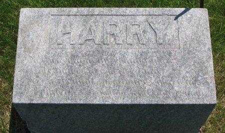 EVERETT, HARRY - Burt County, Nebraska   HARRY EVERETT - Nebraska Gravestone Photos