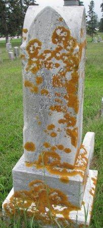EVERETT, WILLIE D. - Burt County, Nebraska | WILLIE D. EVERETT - Nebraska Gravestone Photos
