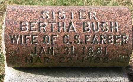 BUSH FARBER, BERTHA - Burt County, Nebraska | BERTHA BUSH FARBER - Nebraska Gravestone Photos