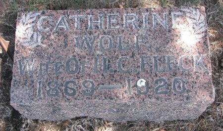 FLECK, CATHERINE - Burt County, Nebraska | CATHERINE FLECK - Nebraska Gravestone Photos