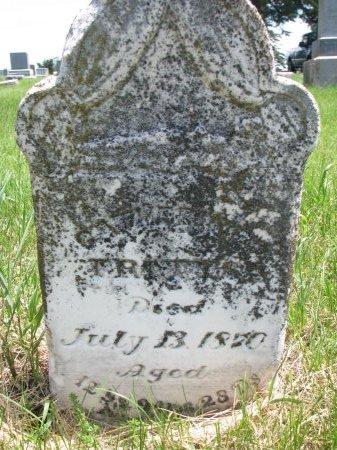 FRITTS, JOSEPHINE MARY  - Burt County, Nebraska | JOSEPHINE MARY  FRITTS - Nebraska Gravestone Photos