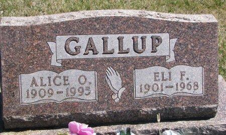 GALLUP, ELI F. - Burt County, Nebraska | ELI F. GALLUP - Nebraska Gravestone Photos