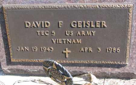 GEISLER, DAVID F. (VIETNAM) - Burt County, Nebraska | DAVID F. (VIETNAM) GEISLER - Nebraska Gravestone Photos