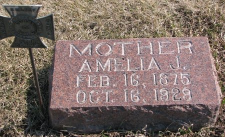 GOULD, AMELIA J. - Burt County, Nebraska   AMELIA J. GOULD - Nebraska Gravestone Photos