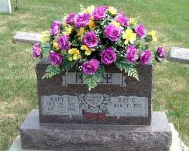 MOELLER HALE, MARY E. - Burt County, Nebraska | MARY E. MOELLER HALE - Nebraska Gravestone Photos