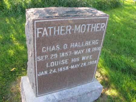 HALLBERG, CHAS. O. - Burt County, Nebraska | CHAS. O. HALLBERG - Nebraska Gravestone Photos