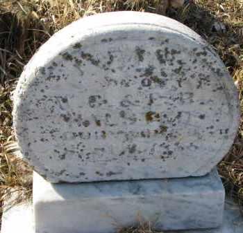 HALSTEAD, INFANT DAUGHTER - Burt County, Nebraska | INFANT DAUGHTER HALSTEAD - Nebraska Gravestone Photos
