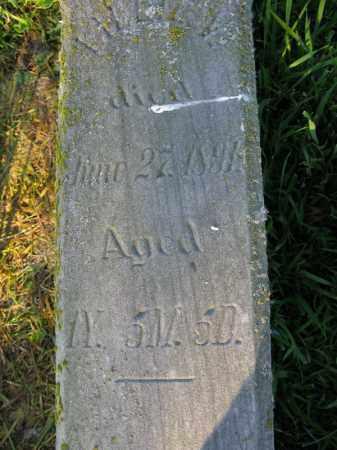 HANSEN, LILLIE V. - Burt County, Nebraska | LILLIE V. HANSEN - Nebraska Gravestone Photos