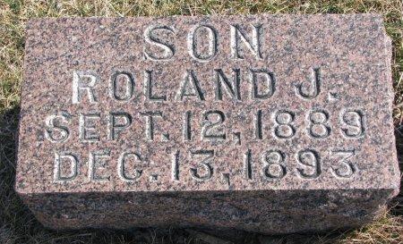 HANSON, ROLAND J. - Burt County, Nebraska | ROLAND J. HANSON - Nebraska Gravestone Photos