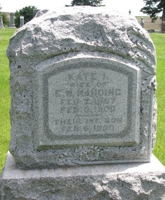 HARDING, INFANT SON - Burt County, Nebraska | INFANT SON HARDING - Nebraska Gravestone Photos