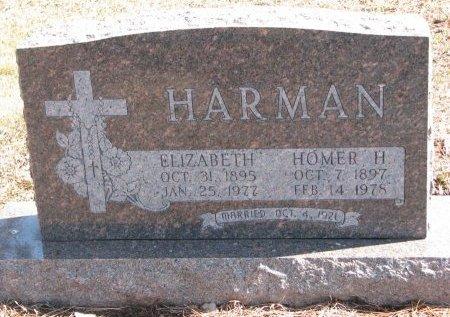 HARMAN, HOMER H. - Burt County, Nebraska | HOMER H. HARMAN - Nebraska Gravestone Photos