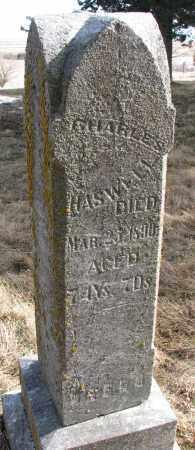 HASWELL, CHARLES - Burt County, Nebraska | CHARLES HASWELL - Nebraska Gravestone Photos