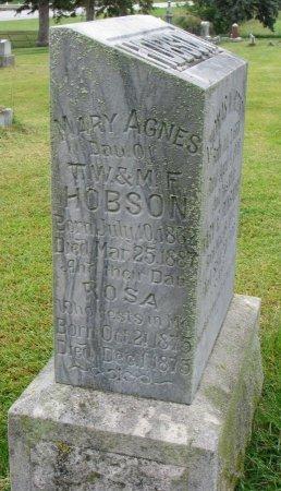 HOBSON, MARY AGNES - Burt County, Nebraska   MARY AGNES HOBSON - Nebraska Gravestone Photos