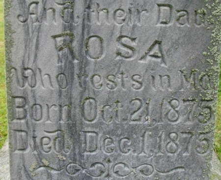 HOBSON, ROSA (CLOSE UP) - Burt County, Nebraska | ROSA (CLOSE UP) HOBSON - Nebraska Gravestone Photos