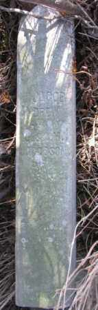 JACOBSEN, JACOB ANDREW - Burt County, Nebraska | JACOB ANDREW JACOBSEN - Nebraska Gravestone Photos