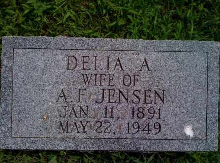 HULTGREN JENSEN, DELIA - Burt County, Nebraska | DELIA HULTGREN JENSEN - Nebraska Gravestone Photos