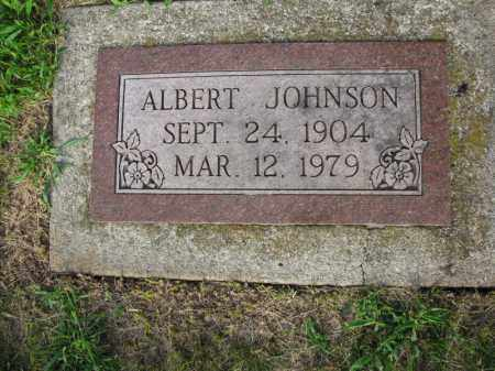 JOHNSON, ALBERT - Burt County, Nebraska | ALBERT JOHNSON - Nebraska Gravestone Photos
