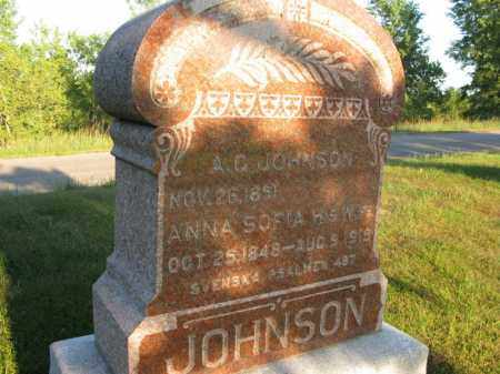 JOHNSON, ANNA SOFIA - Burt County, Nebraska | ANNA SOFIA JOHNSON - Nebraska Gravestone Photos