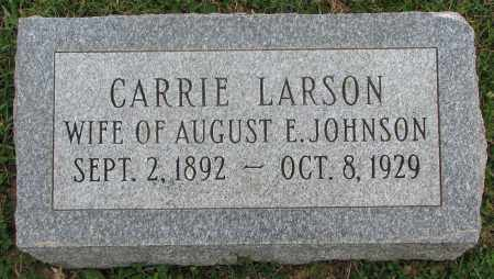 JOHNSON, CARRIE - Burt County, Nebraska | CARRIE JOHNSON - Nebraska Gravestone Photos