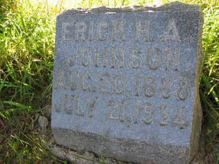 JOHNSON, ERICK H.A. - Burt County, Nebraska | ERICK H.A. JOHNSON - Nebraska Gravestone Photos