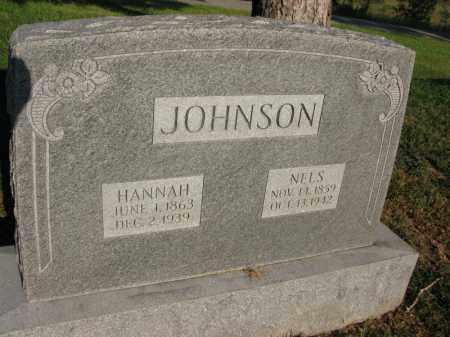 JOHNSON, NELS - Burt County, Nebraska | NELS JOHNSON - Nebraska Gravestone Photos