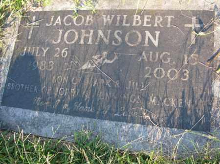 JOHNSON, JACOB WILBERT - Burt County, Nebraska | JACOB WILBERT JOHNSON - Nebraska Gravestone Photos