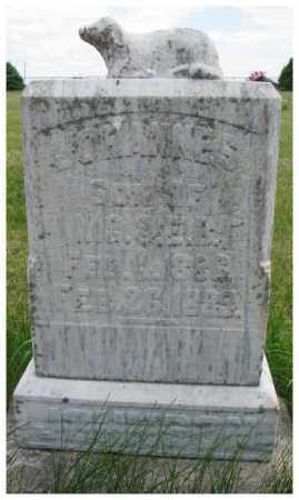 JOHNSON, JOHANNES - Burt County, Nebraska | JOHANNES JOHNSON - Nebraska Gravestone Photos