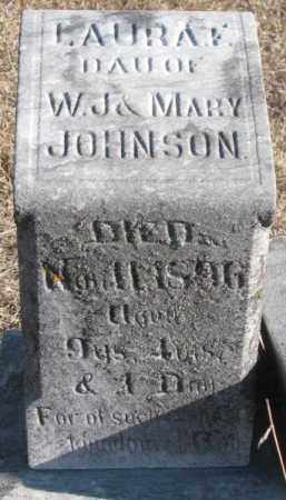 JOHNSON, LAURA F. - Burt County, Nebraska | LAURA F. JOHNSON - Nebraska Gravestone Photos