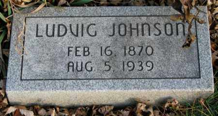 JOHNSON, LUDVIG - Burt County, Nebraska | LUDVIG JOHNSON - Nebraska Gravestone Photos