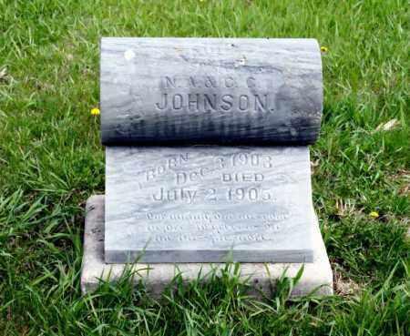 JOHNSON, PAUL - Burt County, Nebraska | PAUL JOHNSON - Nebraska Gravestone Photos
