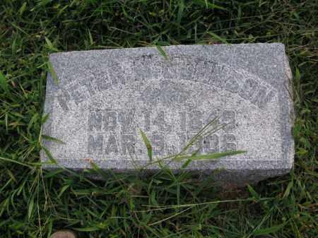 JOHNSON, PETER M. - Burt County, Nebraska | PETER M. JOHNSON - Nebraska Gravestone Photos