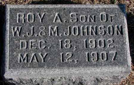 JOHNSON, ROY A. - Burt County, Nebraska | ROY A. JOHNSON - Nebraska Gravestone Photos