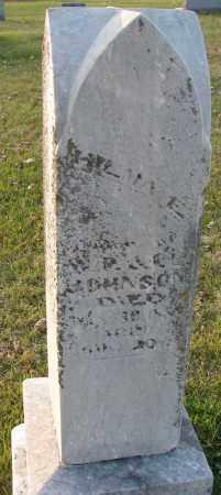 JOHNSON, WILMA E. - Burt County, Nebraska | WILMA E. JOHNSON - Nebraska Gravestone Photos